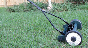 "16"" inch lifetime reel mower"